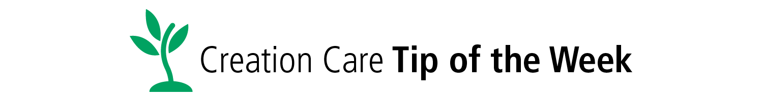 Creation Care Tip of the Week