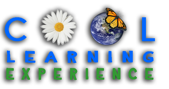 Cool Learning Experience logo